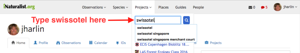 How to use iNaturalist & join a Swissôtel project | Alpine