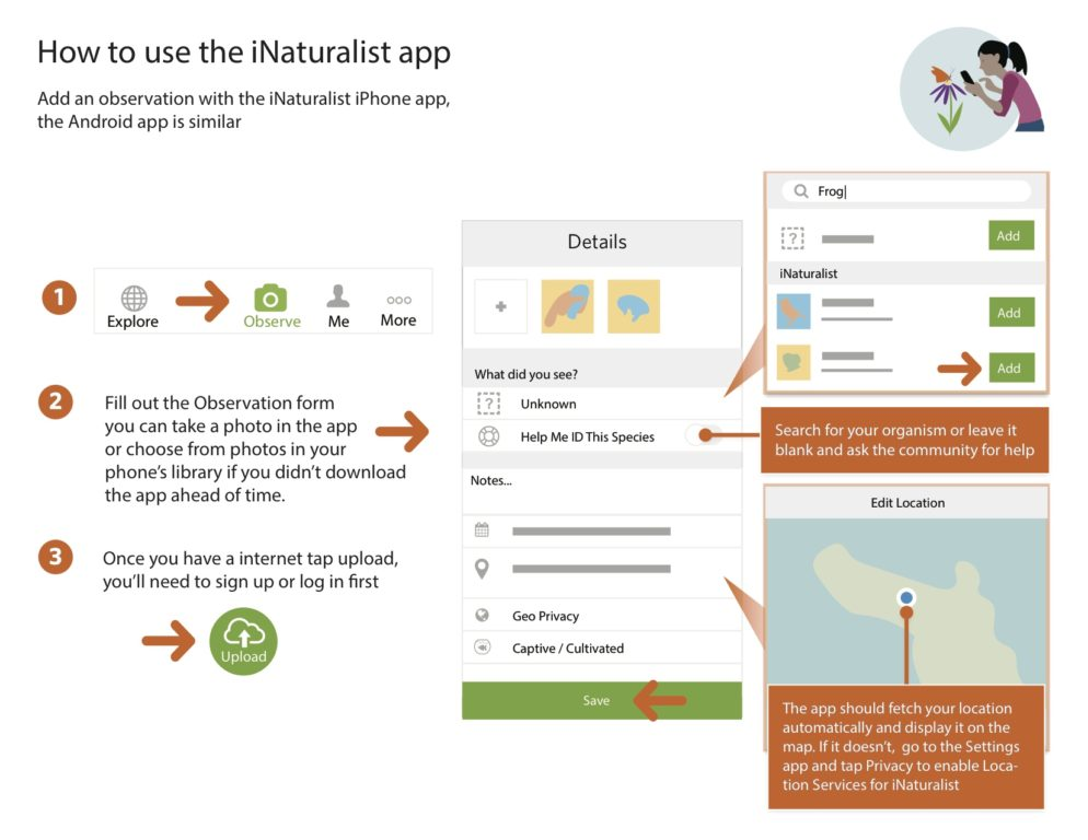 inaturalist-bioblitz_add_app