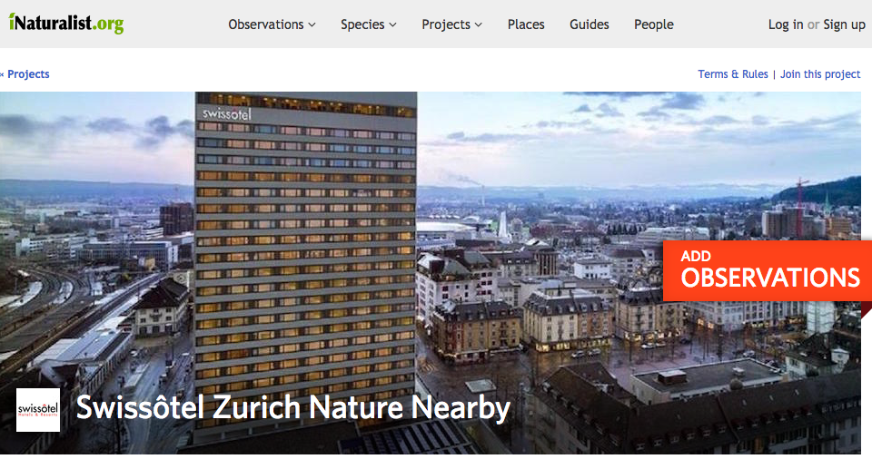 inaturalist_zurich-project-header-1